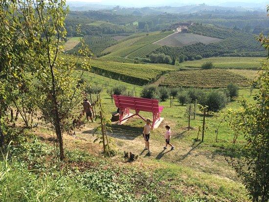 La panchina gigante tra le colline di Alba